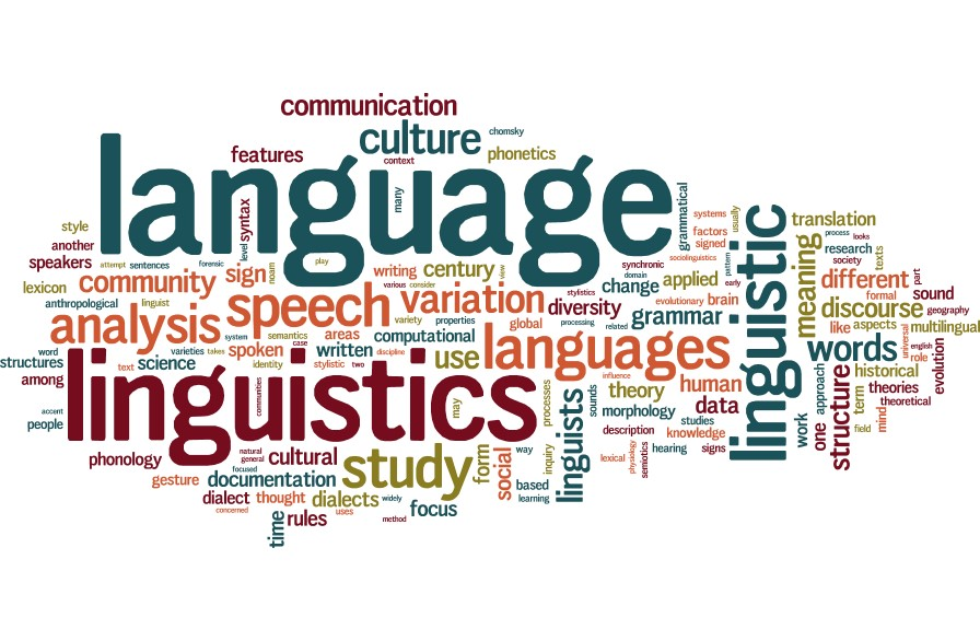 The different terms used in linguistics